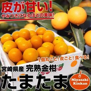 sanchokudayori_127124674
